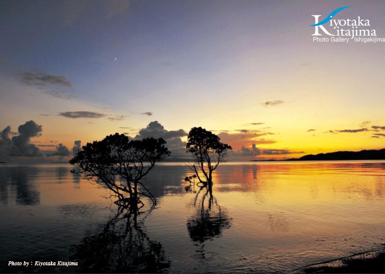 2011沖縄島旅カレンダー