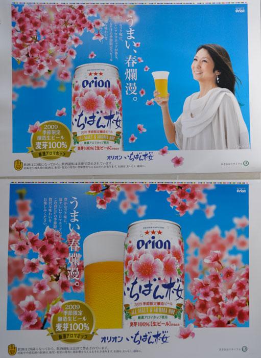 オリオンビール「いちばん桜」特大ポスター