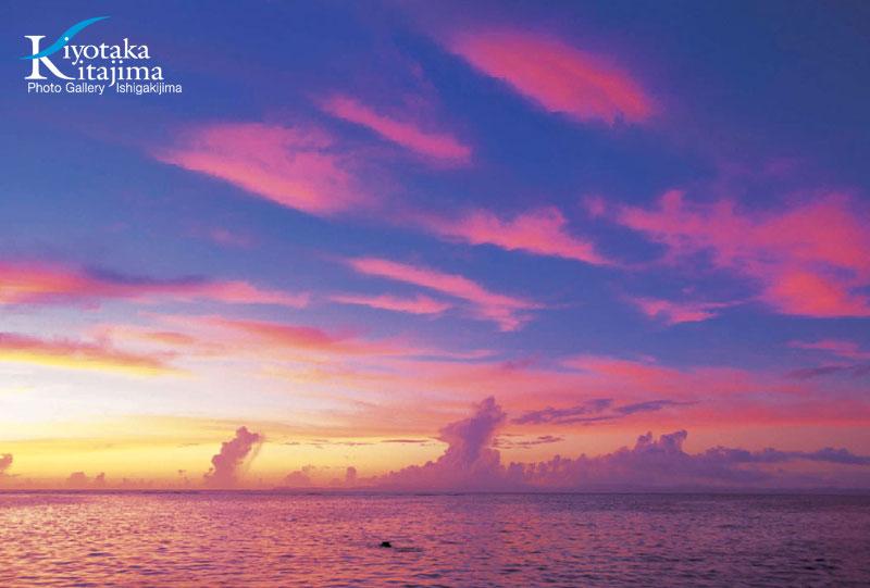 2011やすらぎの沖縄カレンダー 1月