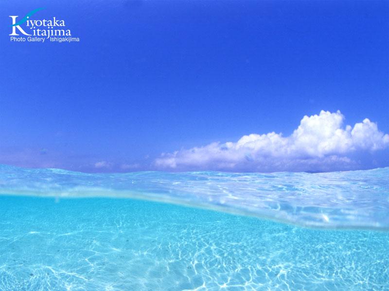 2011沖縄島旅カレンダー 4月