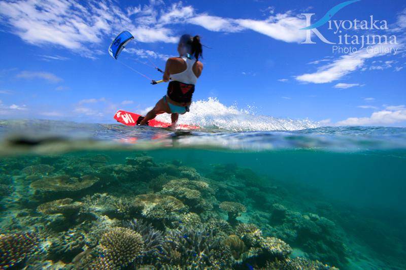 Kite & Coral ①