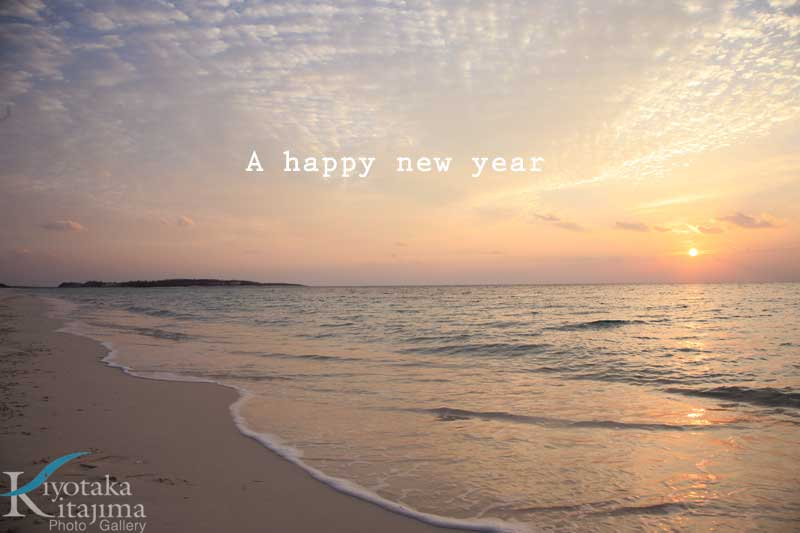 A happy new year 2008