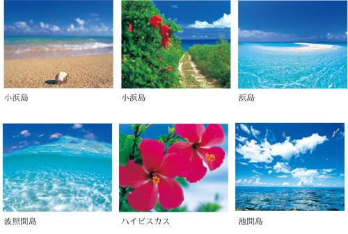 沖縄島旅ポストカードセット12枚入り