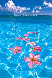 沖縄島旅 1 ポストカード 6枚入