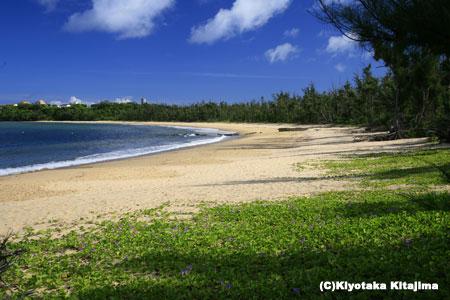 西表島:月ヶ浜