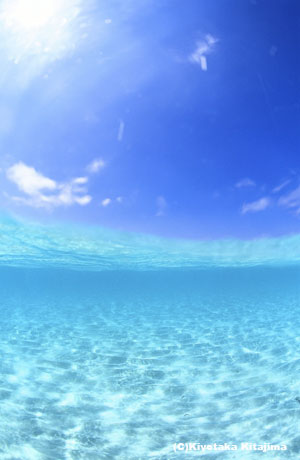 水中:半水面