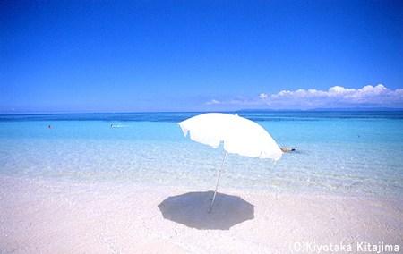 003ビーチ:ビーチパラソル