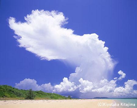 003ビーチ:ドラゴン