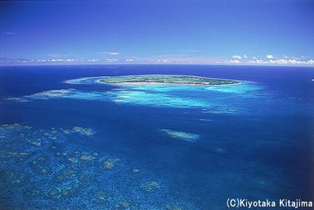 003サンゴ:Coral reef paradise