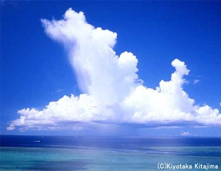 003小浜島:スコール