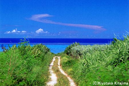 003小浜島:空へ