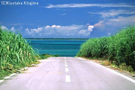 003小浜島:Tomorrow