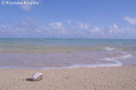 003ビーチ:My way
