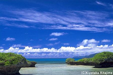 新城島:PANARI