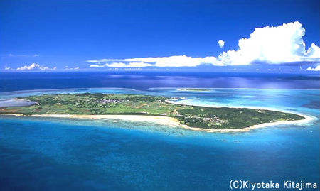 水中:やすらぎの島