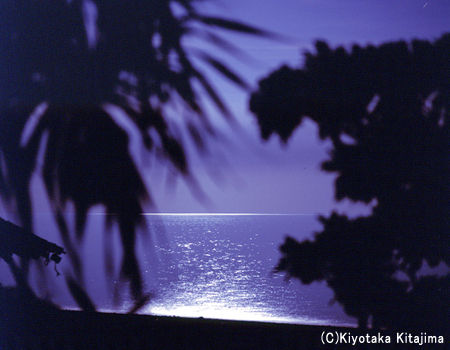 小浜島:Moon light