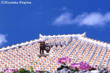 018竹富島:シーサー