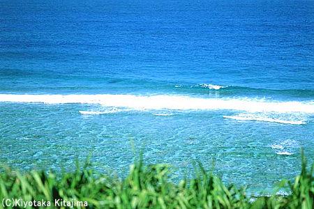 003ビーチ:WAVE