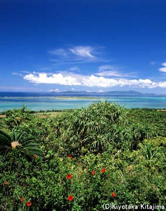 003小浜島:ISLAND
