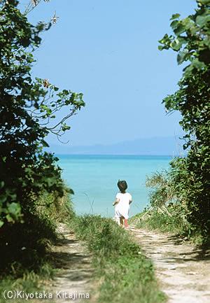 003小浜島:あの夏へ