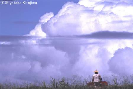 003小浜島:島に生きる