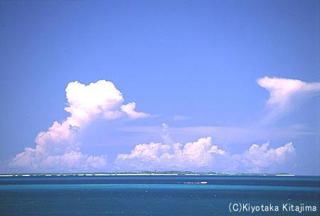 040新城島:夏の風景