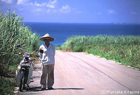 003小浜島:わした島