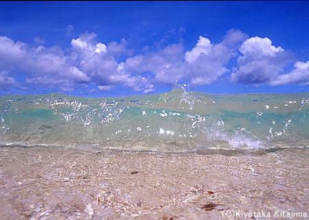 003ビーチ:wave art