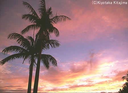 003小浜島:雲の彩