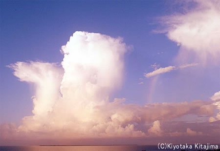 003小浜島:rainbow