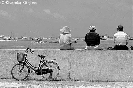 001石垣島:ユッカヌヒー