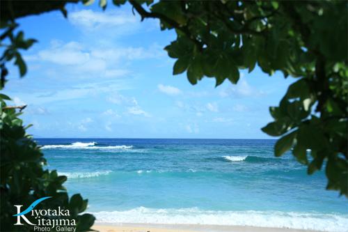 古宇利島:古宇利の波