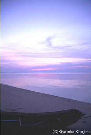 003ビーチ:朝焼け