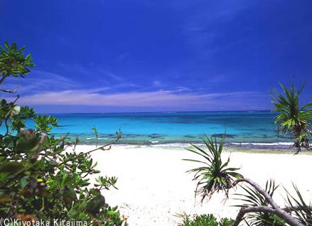 003ビーチ:blue sea
