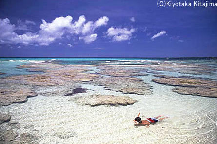 003ビーチ:イノー