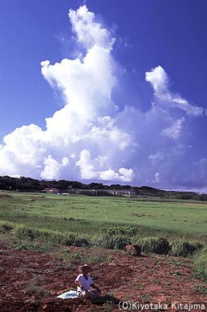 小浜島:オジィの力