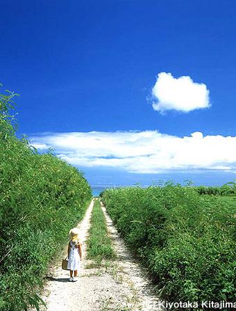 003小浜島:おきなわの記憶