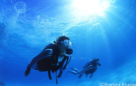 002水中写真:ランデブー