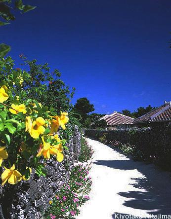 018竹富島:珊瑚礁の島
