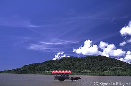 水牛車で渡る島