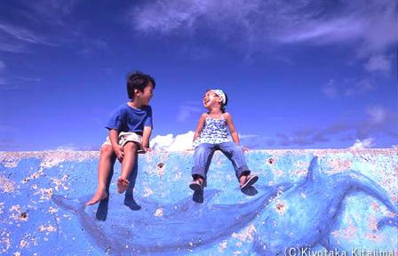 小浜島:with dolphins